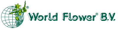 World Flower B.V.